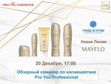 Внимание! Обзорный семинар Pro You Professional в Москве 20 декабря в 17:00!